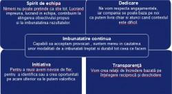 Principii Faurecia - Microsoft Word_2